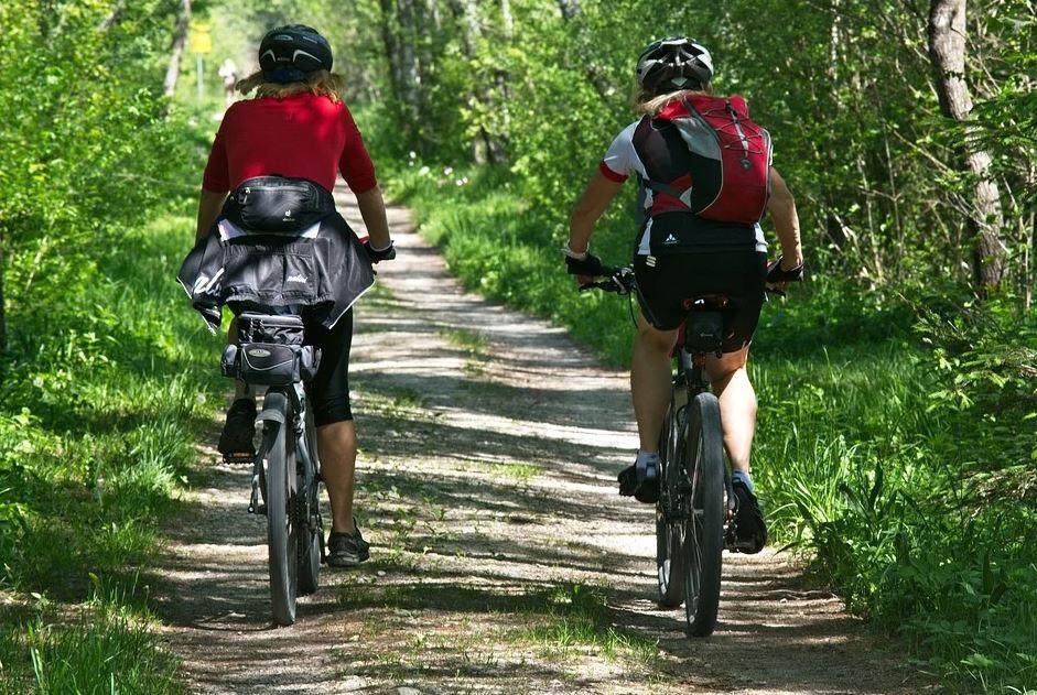 S nosičem kol na tažné zařízení k cyklotrasám Jižních Čech